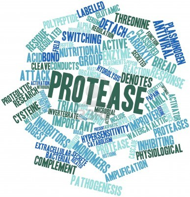 16678523-abstract-word-cloud-for-protease-with-related-tags-and-terms