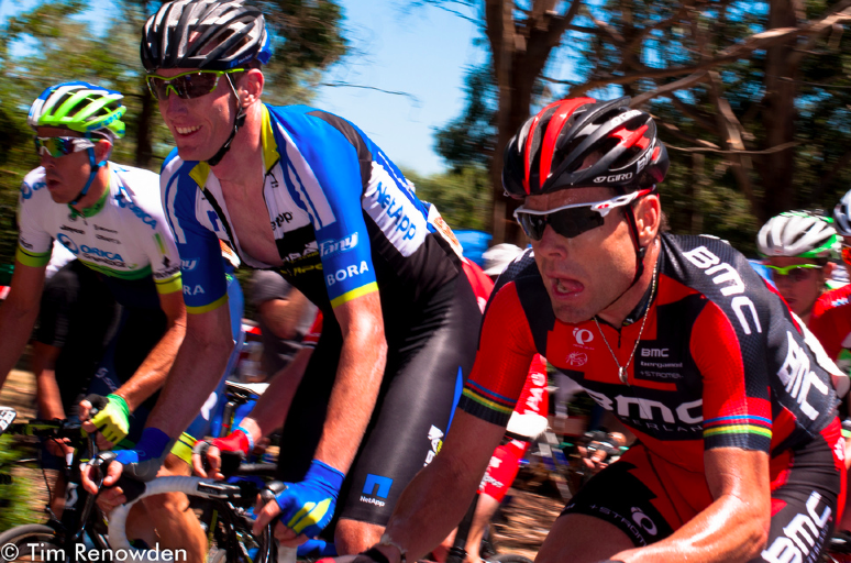Cadel Evans gave it his all